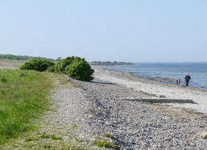 Der Strand bei Falshöft an der Ostsee